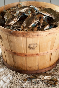 Food Photography Bushel of Blue Crabs