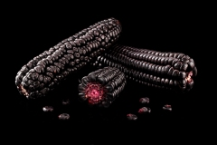 Peruvian Purple Corn Low Res